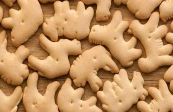 galletasjpg_copy_600x390